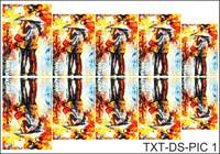 Слайдер-дизайн Nail Dream - Текстура - Картины TXT-DS-PIC1